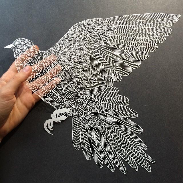 http://instagram.com/p/rnaHDsoqCC/?modal=true Maude White's bird