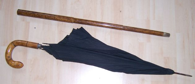 Umbrella can walking stick with telescope case